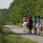 Pony riding in Clairmarais Forest