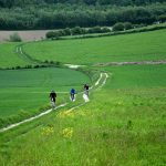 Cycling near Tournehem Forest